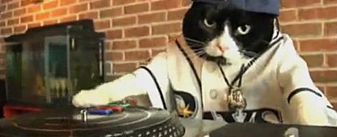 dj-kitty-justin-bieber
