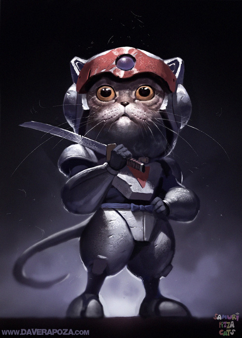 cat samurai