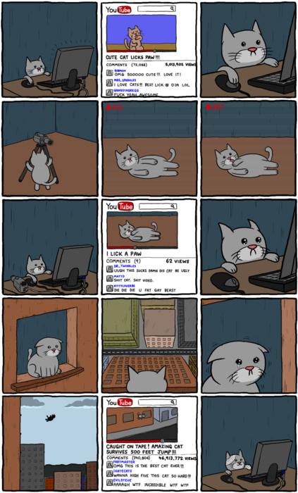Les chats font leur numéro sur youtube
